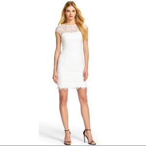 Adrianna Papell Lace Cap Sleeve Dress
